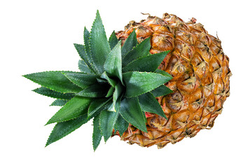 Fototapete - pineapple isolated on white