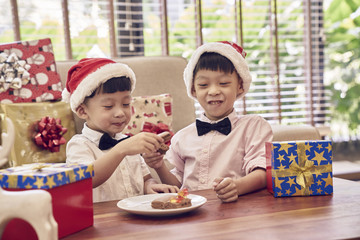 Brothers bonding over Christmas