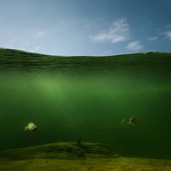 Underwater, fishing background with copy space