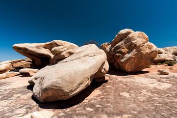 Rochers de pierre rouge dans le secteur des Needles, Canyonlands National Park