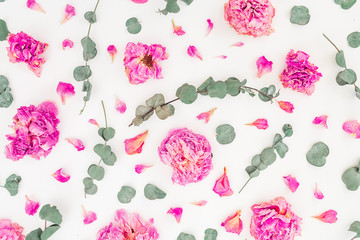 Floral pattern of pink roses and eucalyptus branches isolated on white background. Flat lay, top view. Flower background