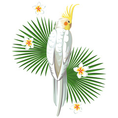 Wall Mural - White parrot bird with plant print wallpaper