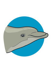 Dolphin head. Vector Illustration