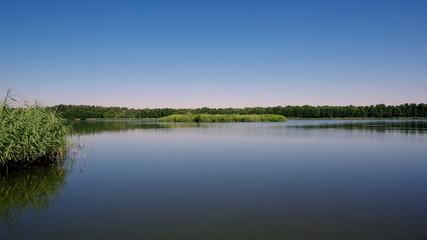 Piękne Stawy Milickie w Dolinie Baryczy - wypoczynek pośród natury, ciszy i przyrody
