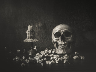 Still life art skull and candle