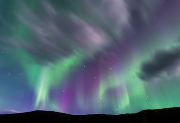 Purple and green Aurora borealis over silhouetted foreground with the Big Dipper prominently positioned in center of purple band