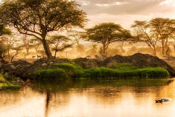 Sunset over the river in Serengeti, Tanzania.