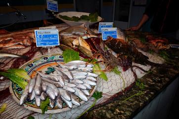 Variety of fresh fish seafood