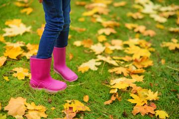 Cute little girl having fun on beautiful autumn day. Happy child playing in autumn park. Kid gathering yellow fall foliage.