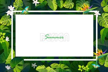 leaf summer backgrounds