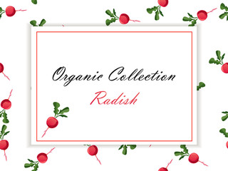 Thin line radish design, Vegetable food banner.