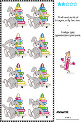 Visual puzzle: Find two identical images of toys. Answer included.