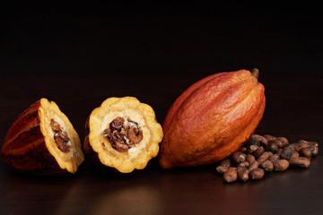 1407841 Cacao open pod