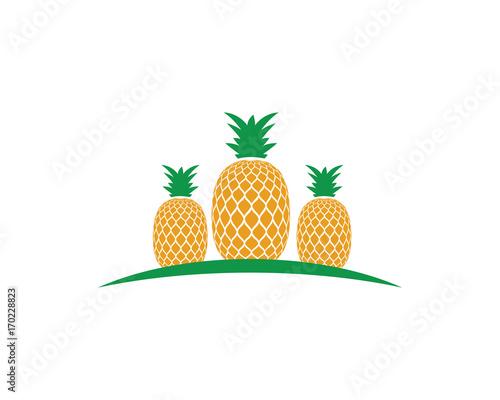 pineapple logo template vector icon illustration design stock image