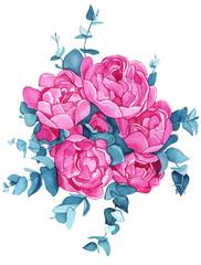 Peonies flowers, watercolor illustration (painting)