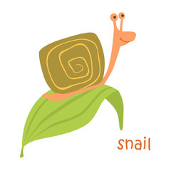 animals set - snail