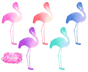Set, collection of watercolor flamingo silhouettes illustration, hand painted isolated on a white background