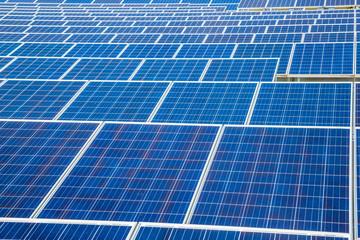 太陽光発電のパネル群