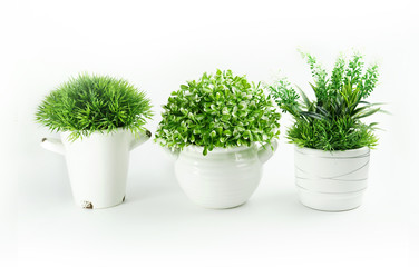 Set of artificial green houseplants in white pots isolated on white background. Artificial grass in indoor pots of various shapes.