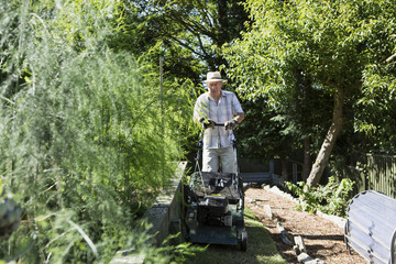 Senior man mows garden lawn, Bournemouth, County Dorset, UK, Europe
