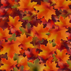 Autumn leaves pattern background. Realistic Vector illustrations