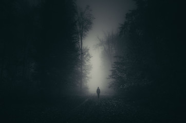 man shadow on dark scary forest path, mystery landscape