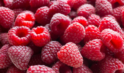 Малина ягоды (Rubus idaeus)
