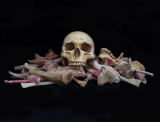 Skull on pile bone on black background, dim light in Halloween night