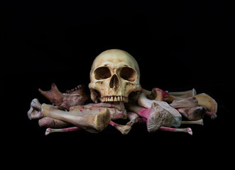 Skull on pile bone on black background in Halloween night