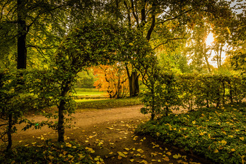 Autumn mood in a park with arch of leaves