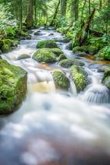 Wasserfälle von Triberg im Schwarzwald Wasserfall und Wildbach