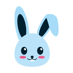 rabbit or bunny cute animal icon image vector illustration design