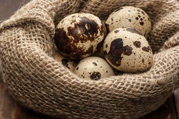 quail eggs in burlap sack over dark wooden background