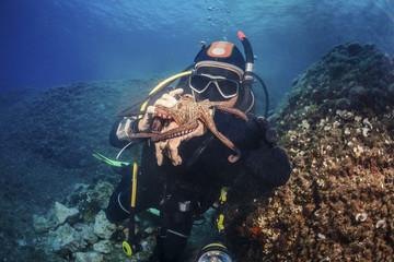 Scuba diver exploring sea life, Adriatic Sea, Dalmatia, Croatia