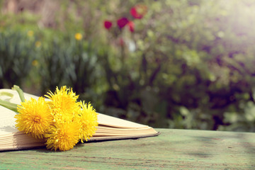 reading in the open air/ open book with a bookmark from a bouquet of flowers on a bench on a sunny day