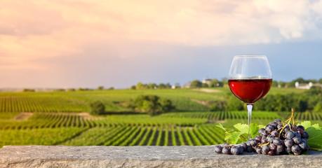 Verre de vin rouge dans les vignes