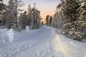 winter road in dawn
