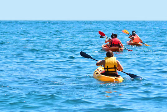A group of kayaks are swimming by the sea