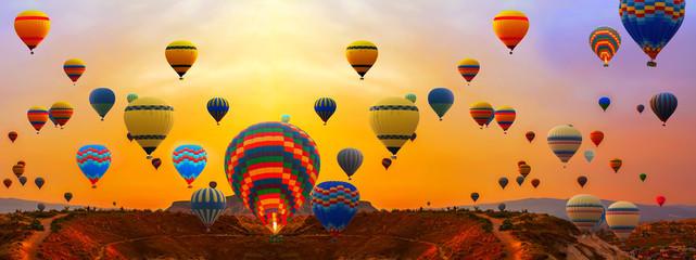hot air balloons panorama landscape