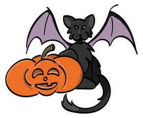 Jack-o-Lantern with Black Bat Cat