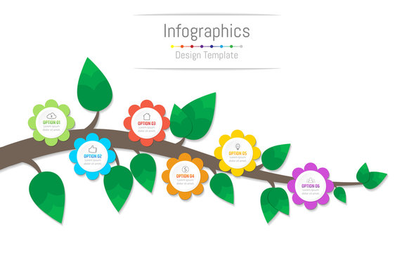 Infographic design elements for your business data with 6 options, parts, steps, timelines or processes, flowers and branch concept. Vector Illustration.