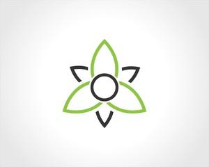 round triangle green leaf logo