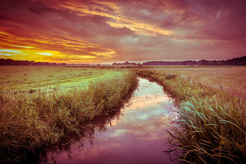 Wall Mural - colorful Indian summer river landscape in vintage colors