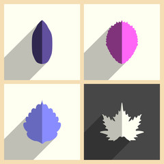 Leaves set of flat icons with shadow. Vector illustration