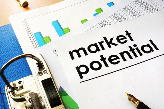 Document Market potential in a blue folder.