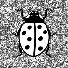 Black and white image of ladybug.