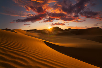 Poster Secheresse Beautiful sand dunes in the Sahara desert