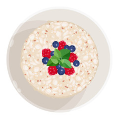 Closeup of oatmeal with fruits isolated illustration on white