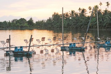 shrimp farm with paddle wheel aerator
