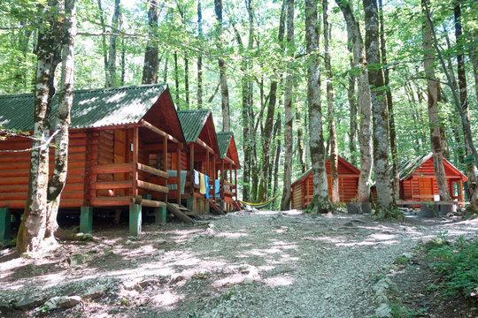 wild cabins